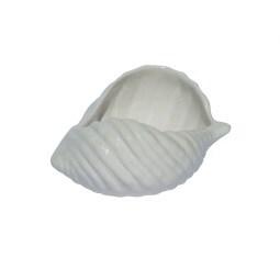 Deko Muschel aus Keramik L/B/H 16/10/7 WHITE Weiß glänzend
