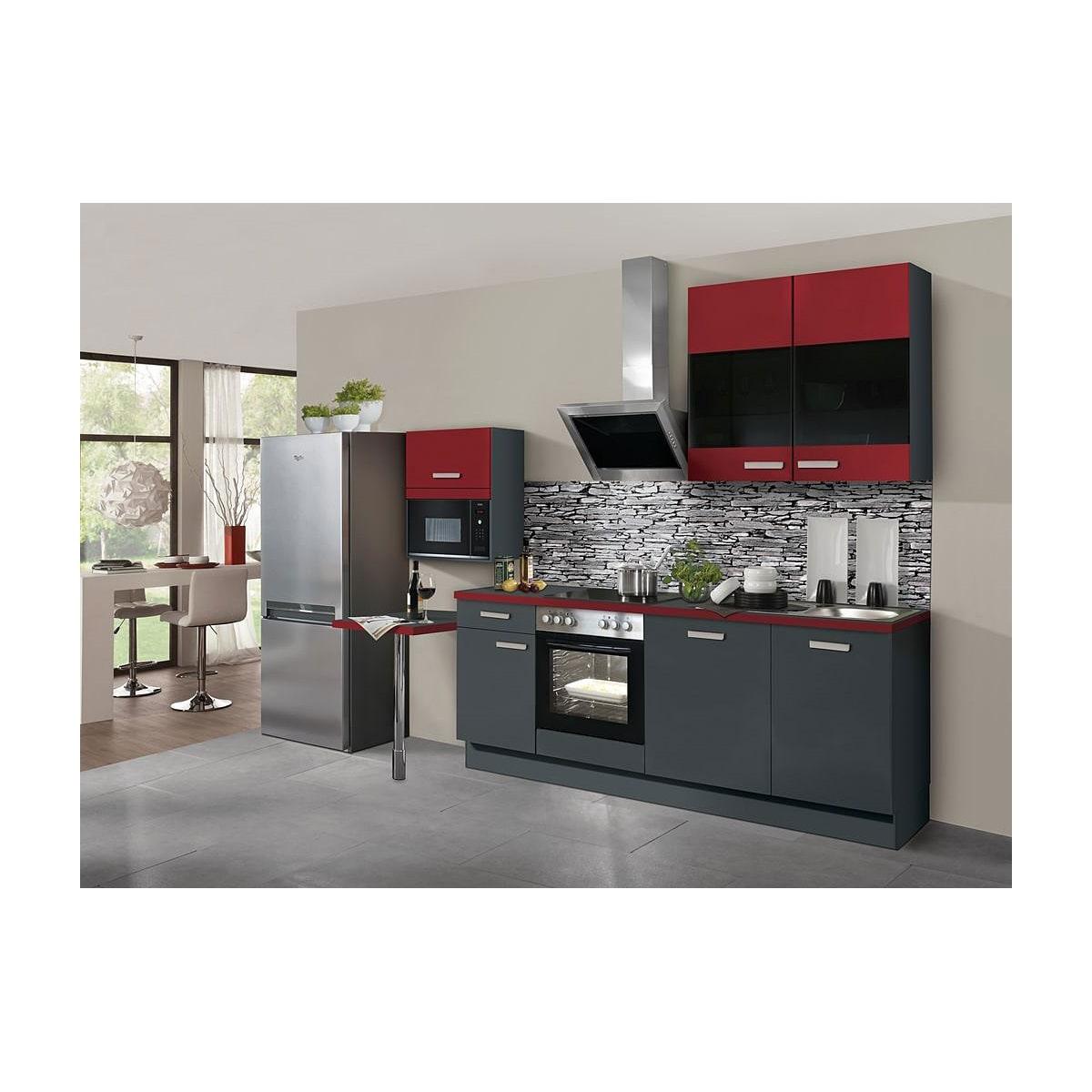 FAKTA Küchenzeile Burgundrot/Grafit matt ca. 20 cm