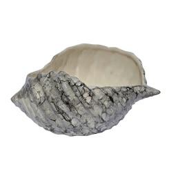 Deko Muschel aus Keramik L/B/H 16/10/7 MARMOR Weiß/Schwarz