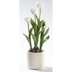 casaNOVA Ostern Tulpen im Topf FRÜHLINGSERWACHEN weiss