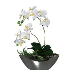Kunstpflanze ORCHIDEE in Schale 40 cm creme