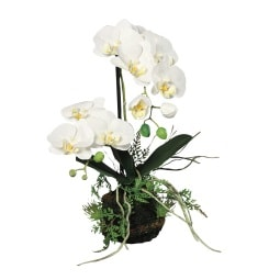 Kunstpflanze ORCHIDEE 45 cm creme