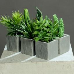 14 bis 20 cm hohe Mini Sukkulente im Topf / Kunstpflanze