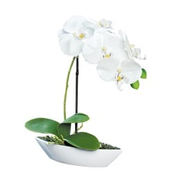 Kunstblume in Schale ORCHIDEE Cremeweiß